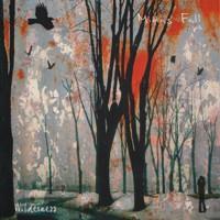 Midas_Fall-Wilderness