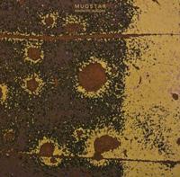Mugstar---Magnetic-Seasons